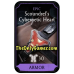 Scoundrels Cybernetic Heart