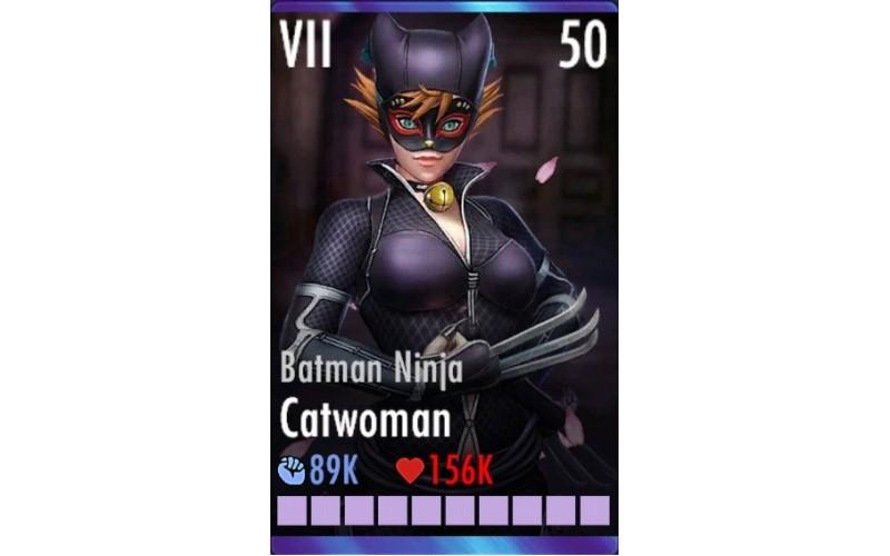 Batman Ninja Catwoman